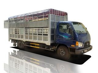 hyundai 7 tấn chở gia súc